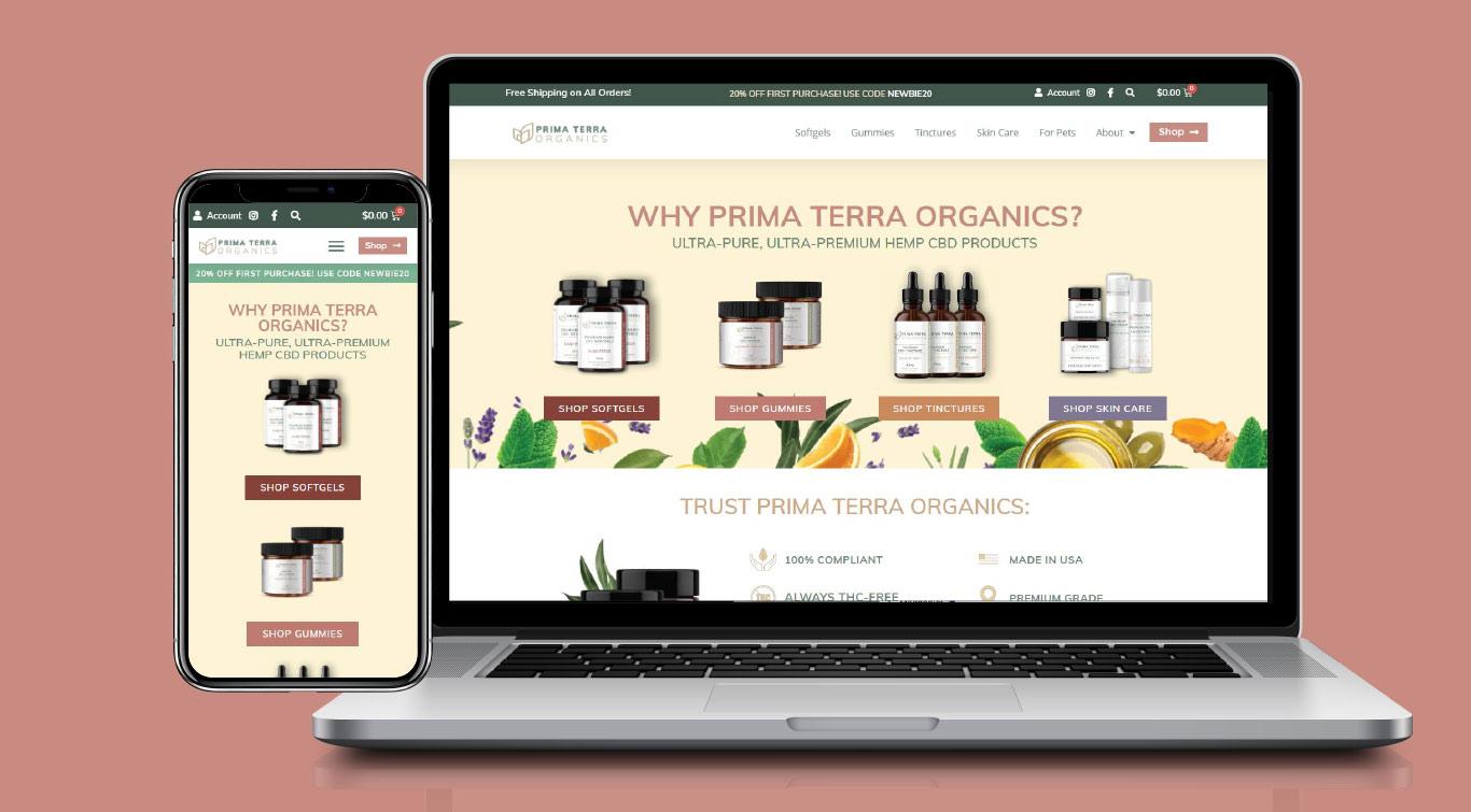 pto-home-web-design